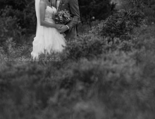 Bettina og Nicolais bryllup